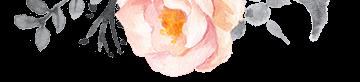orange decorative flower for header