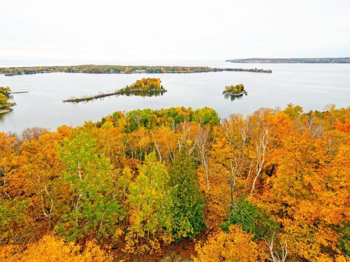 fall colors near a lake